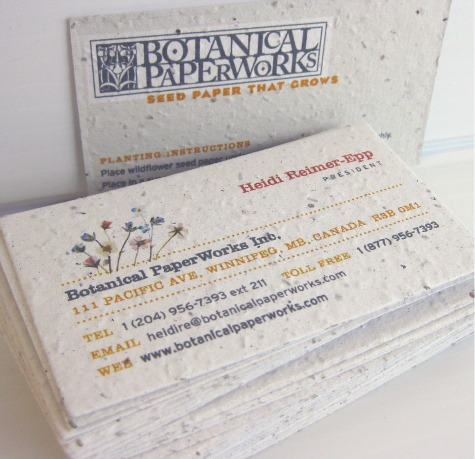New Website New Seed Business Cards Stationery Scoop The Blog By
