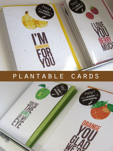 Fruit-stationery-blog