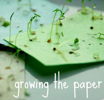 Seed paper that grows herbs, flowers and vegetables when you plant it!
